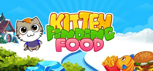 Kitten Finding Food