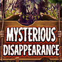 Mysterious Disappearance